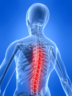 Physiotherapy for Neck and Back Conditions and Injuries